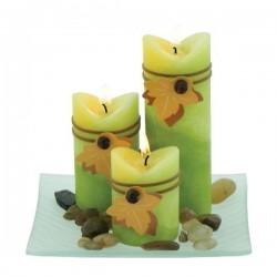 Set bougies Eucalyptus